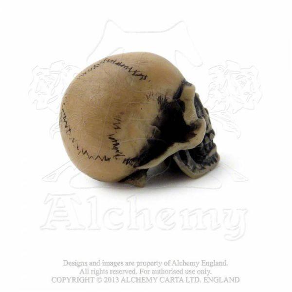 Alchemist Totenschädel Miniatur