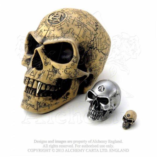 Vampir Totenschädel mit Gravuren - Omega Skull